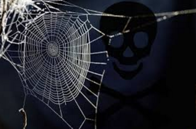 chem webs
