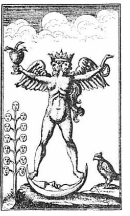 """""""The symbol reproduced above is from a rare edition of the Turbæ Philosophorum published in Germany in 1750, and represents by a hermaphroditic figure the accomplishment of the magnum opus. The active and passive principles of Nature were often depicted by male and female figures, and when these two principle, were harmoniously conjoined in any one nature or body it was customary to symbolize this state of perfect equilibrium by the composite figure above shown."""" (Manly P. Hall, The Secret Teachings of All Ages)."""
