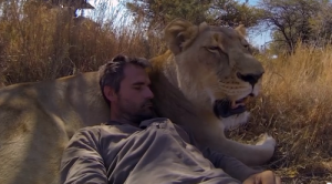 animal communicator kevin richardson with lion