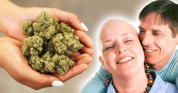 Since-Buying-Pot-Will-Land-You-in-Jail,-Alaskan-Charity-Group-Gives-it-Away-to-Vets-and-Severely-Ill