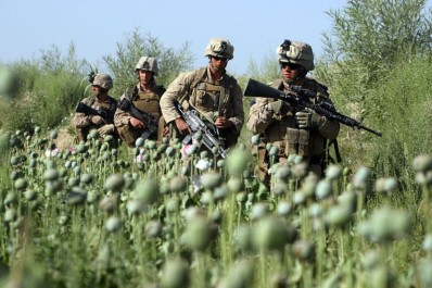 2326a-us-marines-opium-field