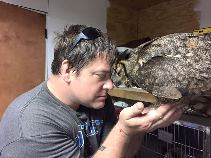 Owl Can't Stop Hugging The Man Who Saved Her After Car Accident Owl6