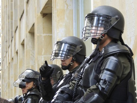 Police State - Public Domain