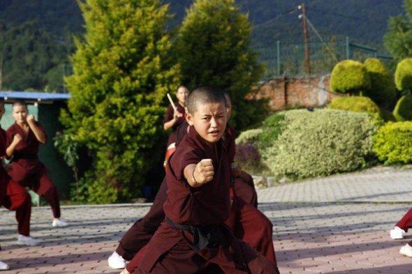 kung-fu-nuns