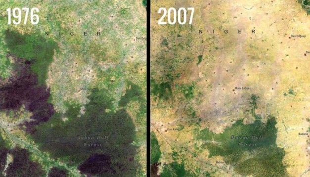 32974-nasa-changing-baban-rafi-forest