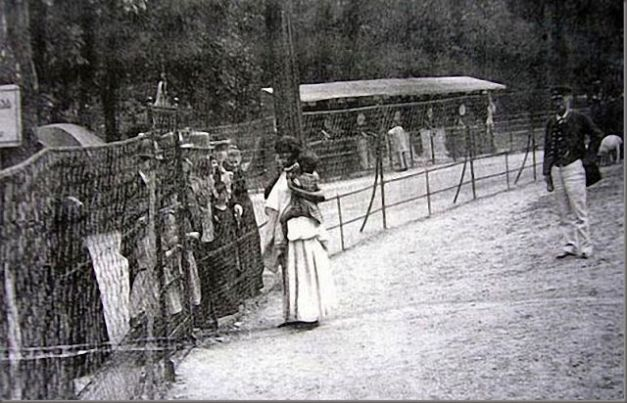 "Human zoos existed 16 Depressing Photos That Will Destroy Your Faith In Humanity - A ""Negro Village"" in Germany displaying a mother and her child."
