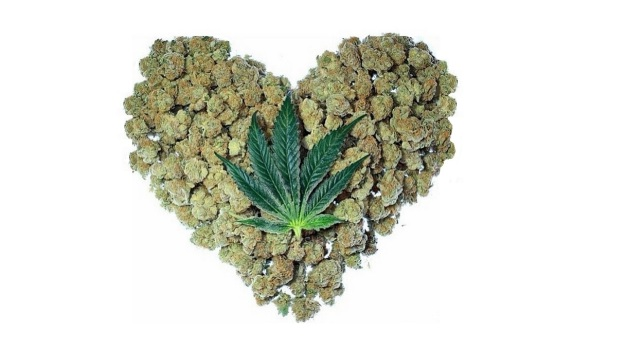 Cannabis May Soon be Used in Stroke and Cardiac Emergencies Maryjane-heart1