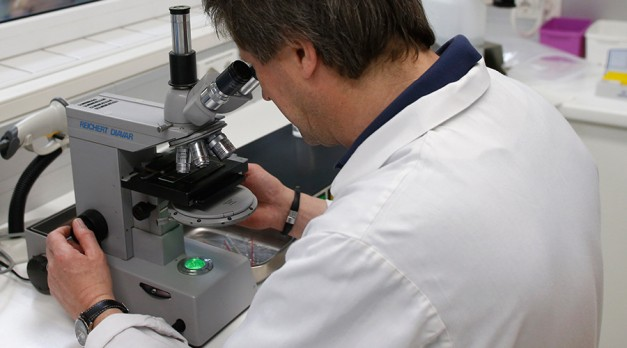 Top British universities found producing 'fake research'