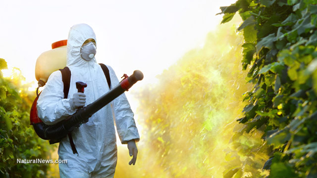 Image: Report: Pesticide poisoning has resulted in 200,000 deaths