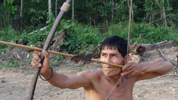 A study in Friday's issue of the medical journal The Lancet compares the vascular health of the Tsimane, a forager-horticulturalist population that hunts for wild, lean game, with the arteries of Westerners.