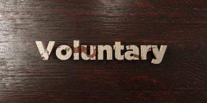 anarchy voluntaryism
