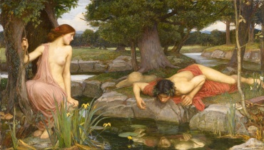 Image result for narcissus