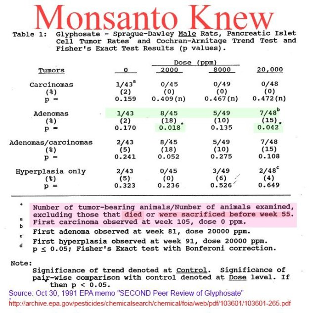 "Printable List of Monsanto Owned ""Food"" Producers Ryuc73a"