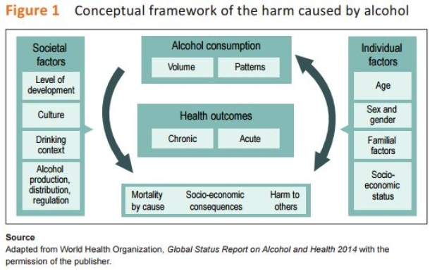 harm caused by alcohol
