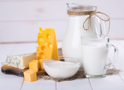 dairy products. cheese, milk, sour cream
