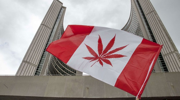 150 state-run marijuana stores: Ontario accused of monopoly as it eyes to weed out black market