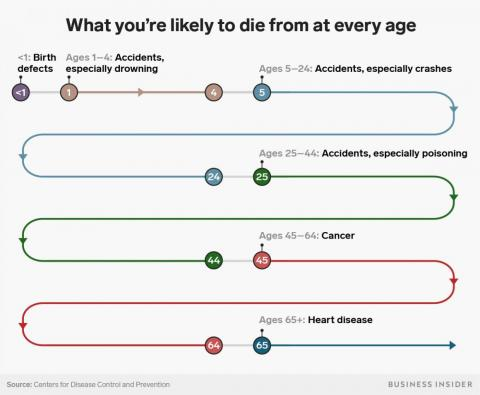Here's a map of what to watch out for from age 0 to 65. Notice that most deaths that occur before age 45 are likely to be caused by accidents.