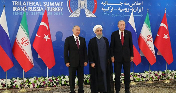 Russian President Vladimir Putin, Turkish President Recep Erdogan and Iran's President Hassan Rouhani are expected to discuss trilateral ties as well as the recent development of the situation in Syria.