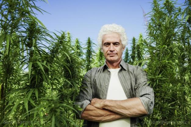Image: BREAKING: President Trump just ended hemp prohibition across America, legalizing industrial hemp farming nationwide