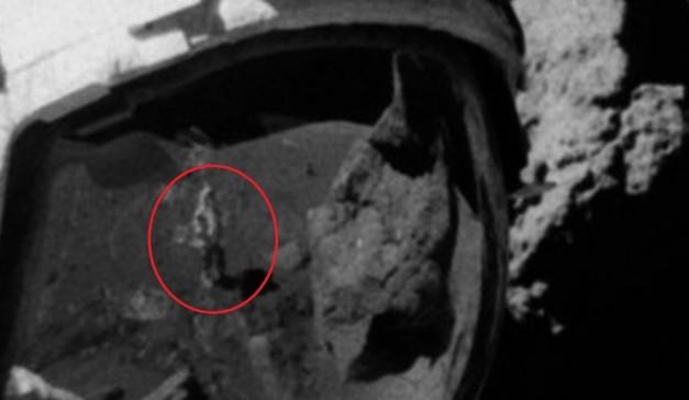 Moon landing PHOTOS reignite conspiracy theories… again 5a118830fc7e932a528b4567