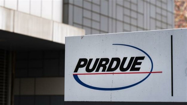 PressTV-Purdue files for bankruptcy over lawsuits in US opioid crisis